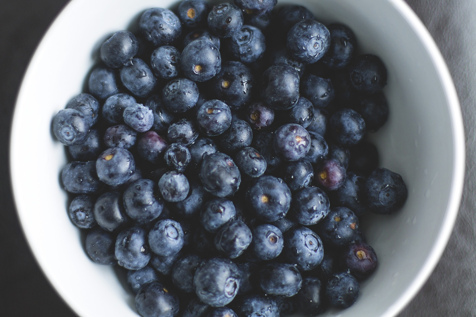 blueberries-1149861_1920